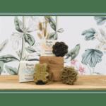 Druydes gamme shampoings solides à Paris
