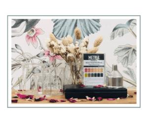 Bécher,  balances,mini-entonnoirs ainsi que bandelettes indicatrices pH à Paris